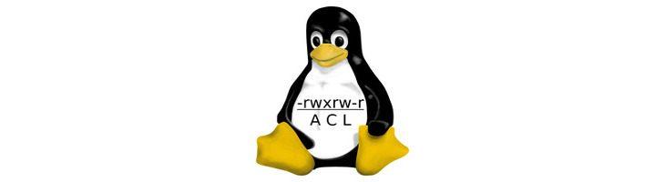 Backup de permisos: cómo hacerlo en Linux