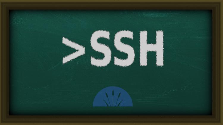 ssh cursos promociones